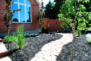 Colored Mulch and Plantings