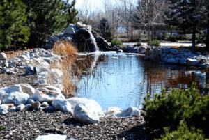 Large Fishing Pond